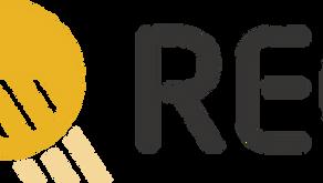 REC Solar Panels: Review