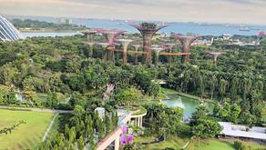 Singapore Towards Most Sustainable Energy City