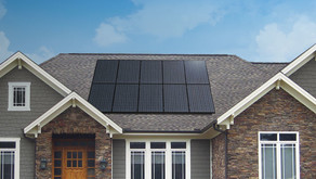 Critter Guards For Solar Panels: Protect Your System From Animals
