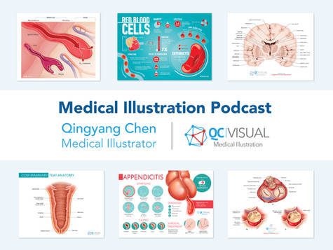 Medical Illustration Podcast - Qingyang Chen interview