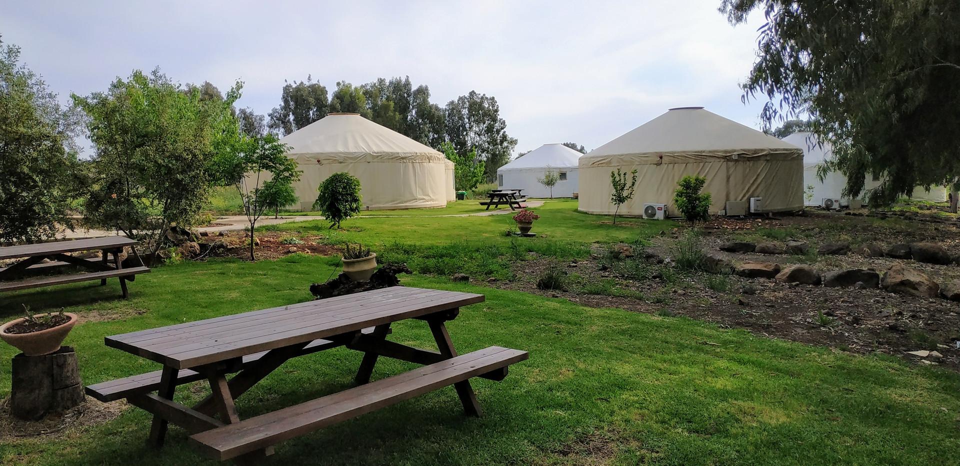 אוהל מונגולי ממוזג ומרוהט