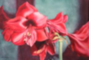 amaryllis, kathleen miller, watercolor