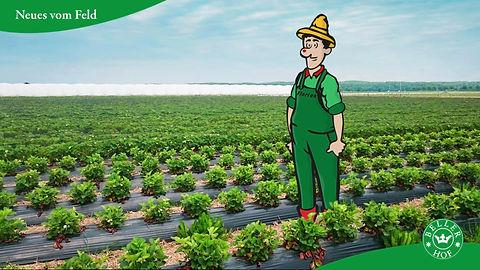 Alljährlich sind die Erdbeeren zum Selberpflücken das Sasion-Highlight auf dem Beller Hof in Köln. Im Video von LIEBE DEINE WELT Marketing, Köln, erklärt Maskottchen Florian, was die Beller Erdbeeren so besonders macht.