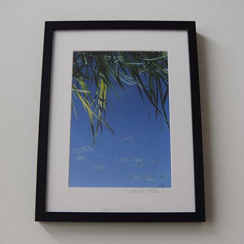 Big Blue by Heather Gartside