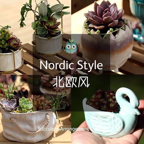 SAC002 | Succulent Arrangement Custom | Nordic Style