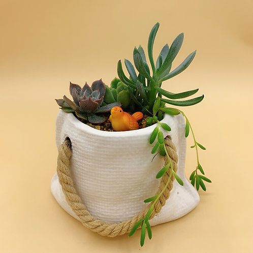 SA011 | Succulent Arrangement | Nordic minimalist gift | Two colors