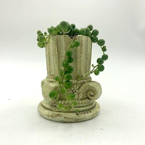 SA004 | Succulent Arrangement | Gift | wedding | decor | Roman column
