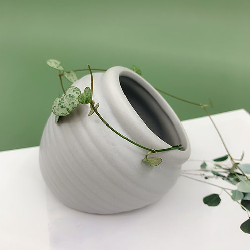 GP177 | glazed pots | minimalist style |  Ceramic grey succulent pot