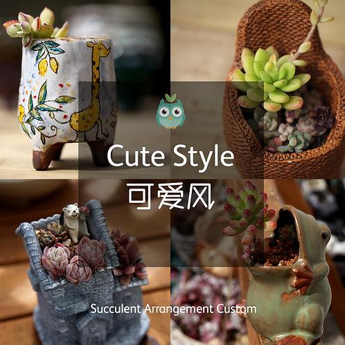 SAC003 | Succulent Arrangement Custom | Cute Style