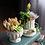 Thumbnail: RS003     树脂花盆 Resin Pots   Rome Style   A set of 2