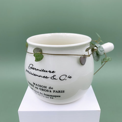 GP171 | glazed pots | minimalist style | white bowl succulent pot