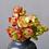 Thumbnail: SU092 |  Aeonium saundersii | Multiple heads |  Minigarden