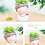 Thumbnail: RS007  | Resin Pots | succulent pot | Boys | 4 Types