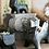 Thumbnail: HG003   Cat Concrete Pots   Home & Garden Decor   2 sizes