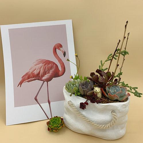 SA007 | Succulent Arrangement | Gift | wedding | decor | Bag
