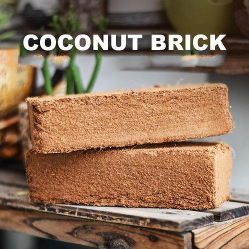 PS012 | Coconut Brick 椰砖 | Succulent soil DIY | Aseptic | 1 Piece