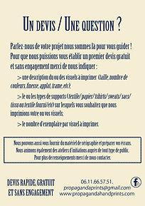 New Flyer PRPGNDverso.jpg