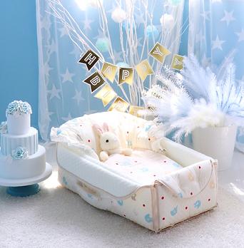 Infant Travel Cradle.png