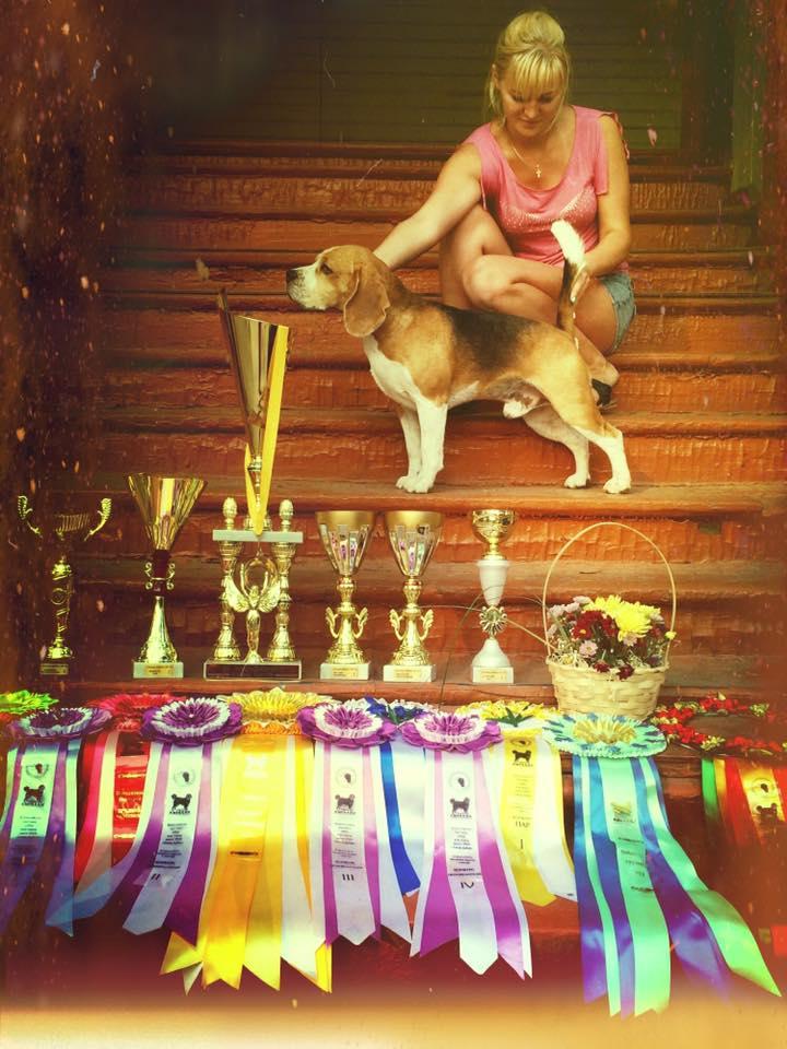 Тоби- Лучшая собака Выставки!.jpg