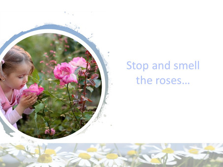 Stop and smell the roses...