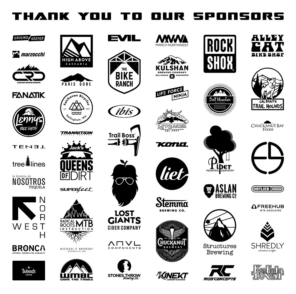 2020-sponsors-STT.jpg