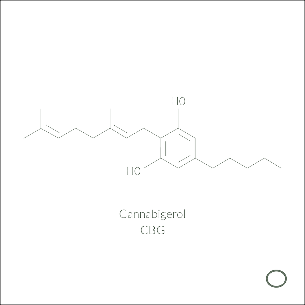 the molecule of CBG