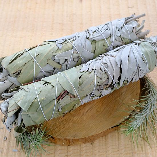 白鼠尾草 X 尤加利 (大) White Sage X Eucalyptus (Large)