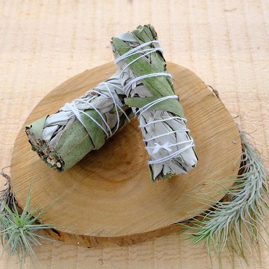 白鼠尾草 X 尤加利 White Sage X Eucalyptus