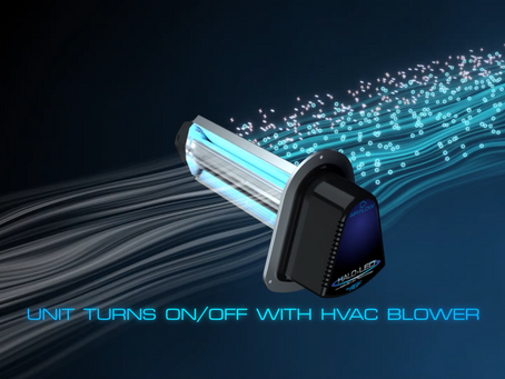 Are UV Lights Worth The Money?