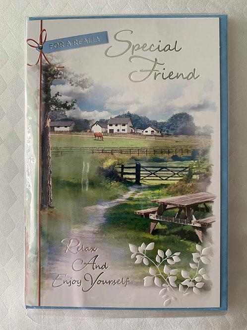 Special Friend Male Birthday Card