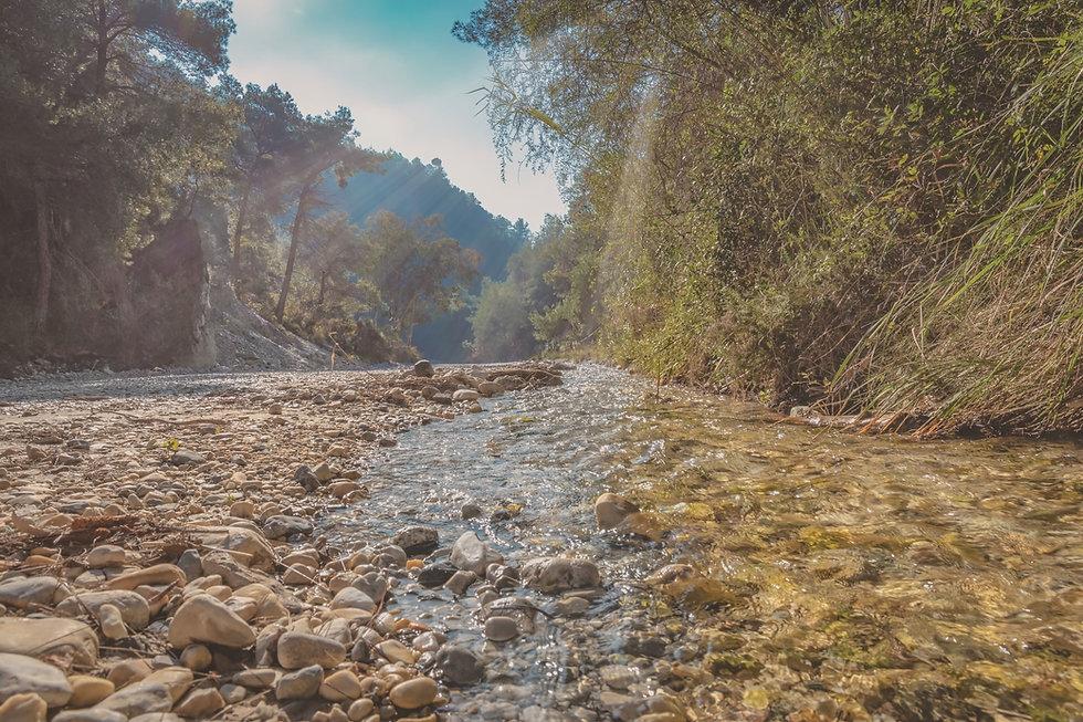 river-bed-3983918.jpg