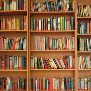 Not Another Marie Kondo Book Blog