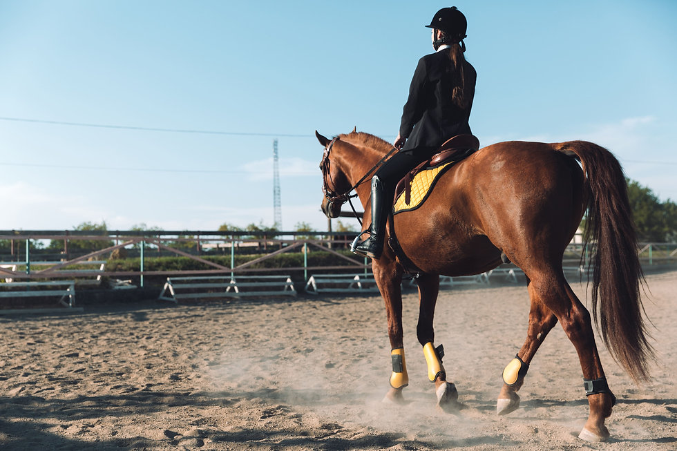 amazing-young-cowgirl-sitting-horse-outd