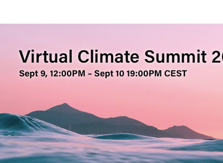 Fleet Forum in workshop panel at IFRC Virtual Climate Summit