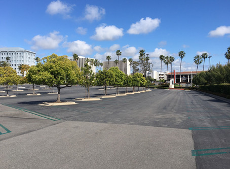 Shopping malls are a ghost town ... permanently?