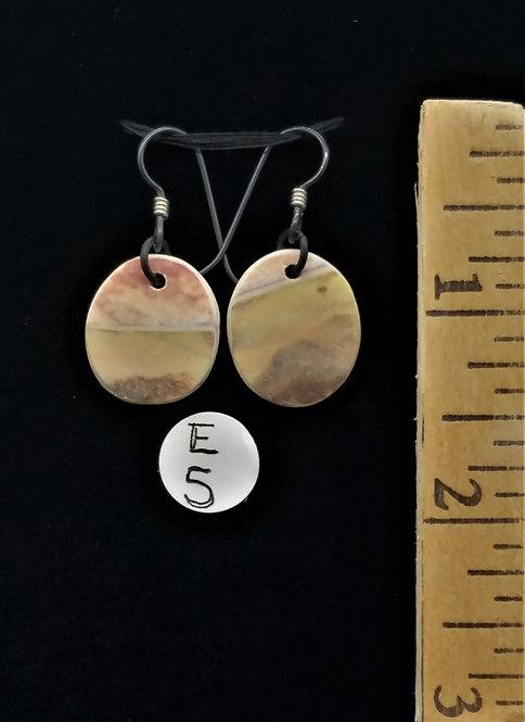 Earrings (E5)