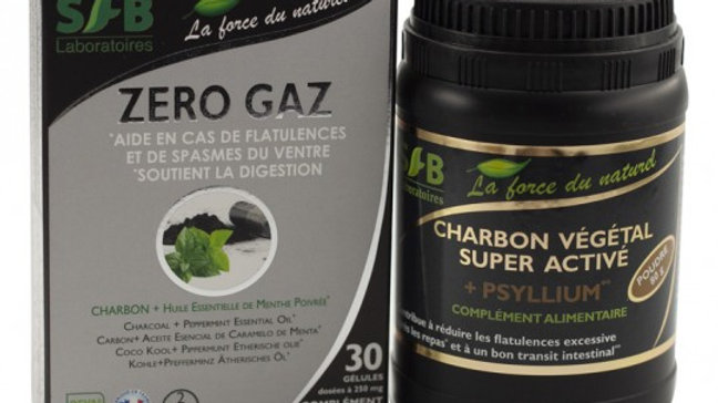 Pack Detox : Zero Gaz + Charbon végétal super activé + Psyllium Bio