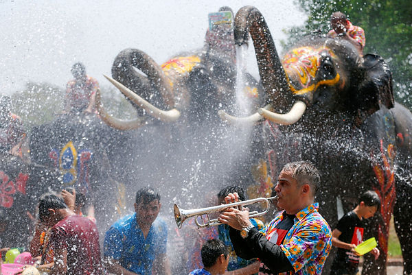 Elephants and water fight.jpg