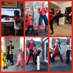 Red Dragons Martial Arts, Online classes, Bristol, Henleaze Horfield, Bishopston, MArtial arts for c