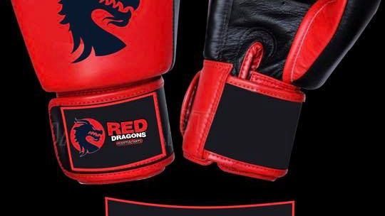 10 oz adult Red Dragons Boxing Gloves