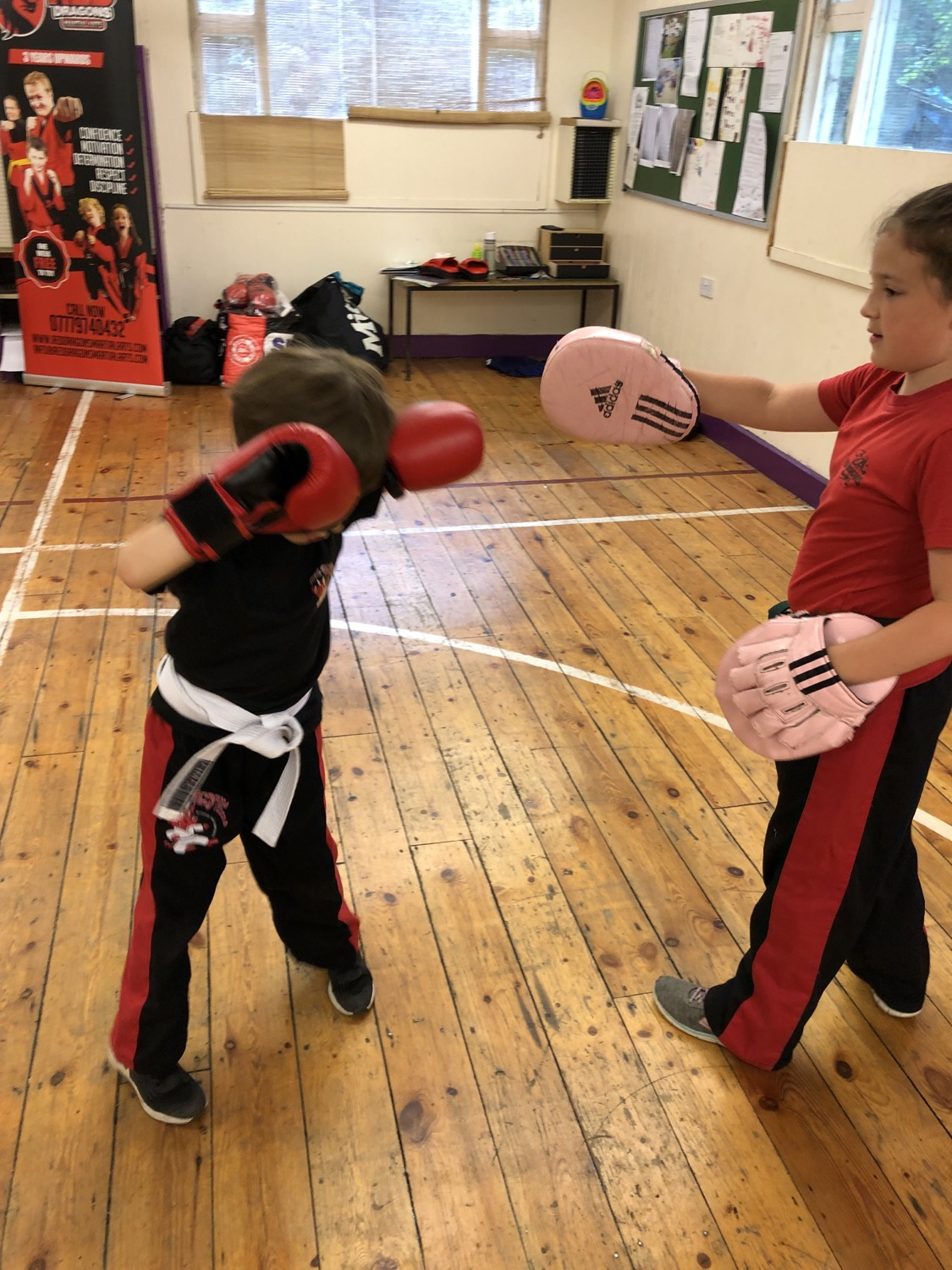 Red Dragons Martial Arts, Martial arts for children, martial arts for adults, martial arts for ladie