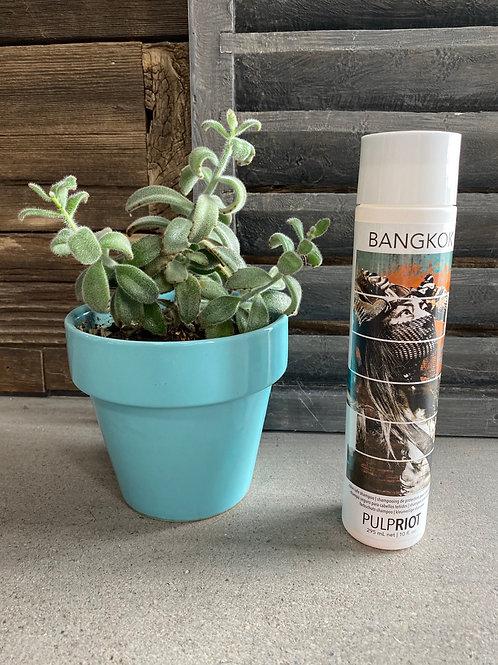 PulpRiot - BANGKOK color safe shampoo