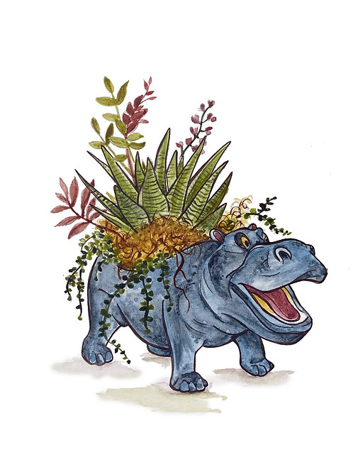 Succy Hippo | watercolor animals