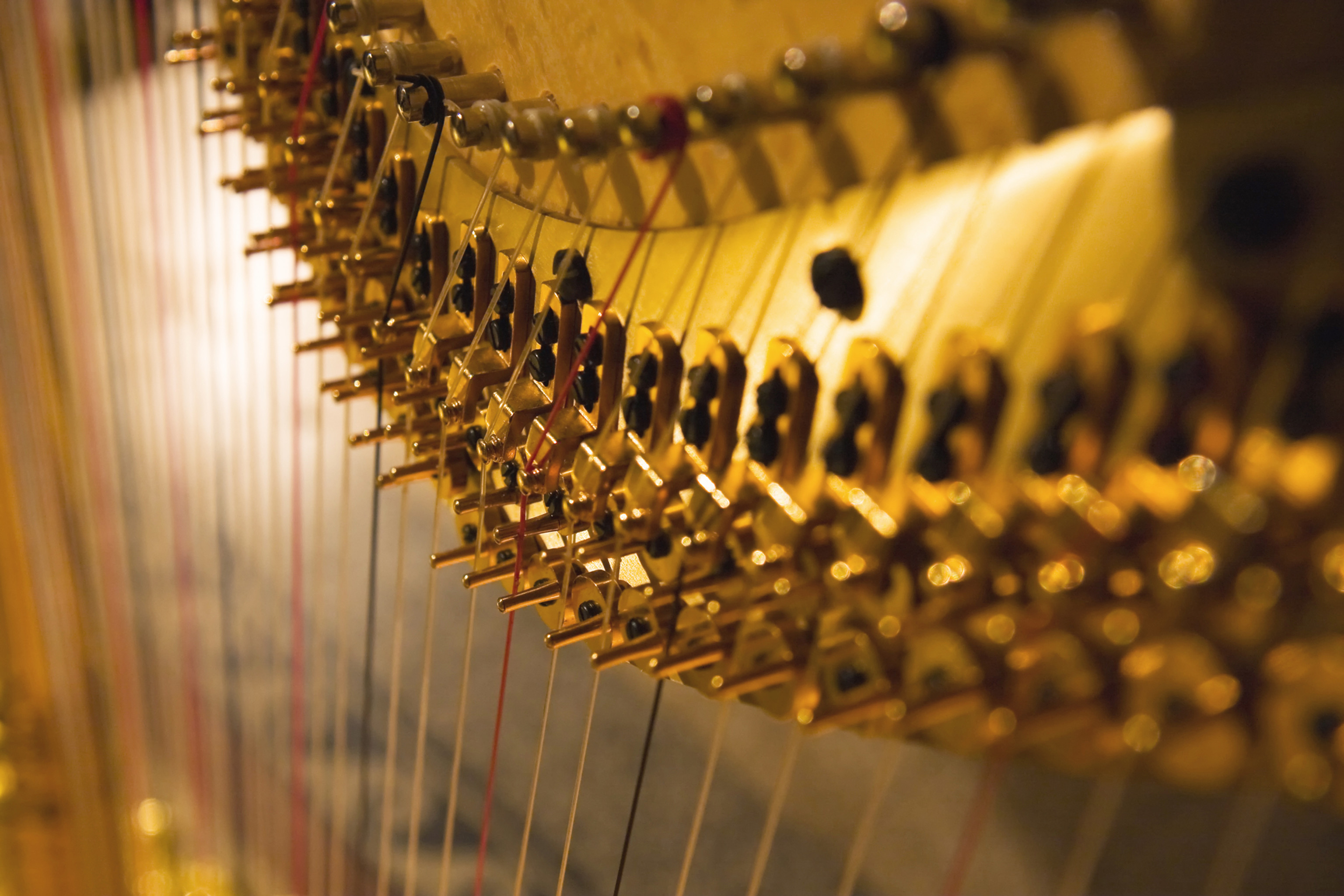 Schnupperlektion Harfe