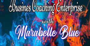 The Launch of the Business Enterprise Coaching