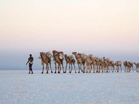 Ambassador Kadafo Mohamed Hanfare: Observations #2