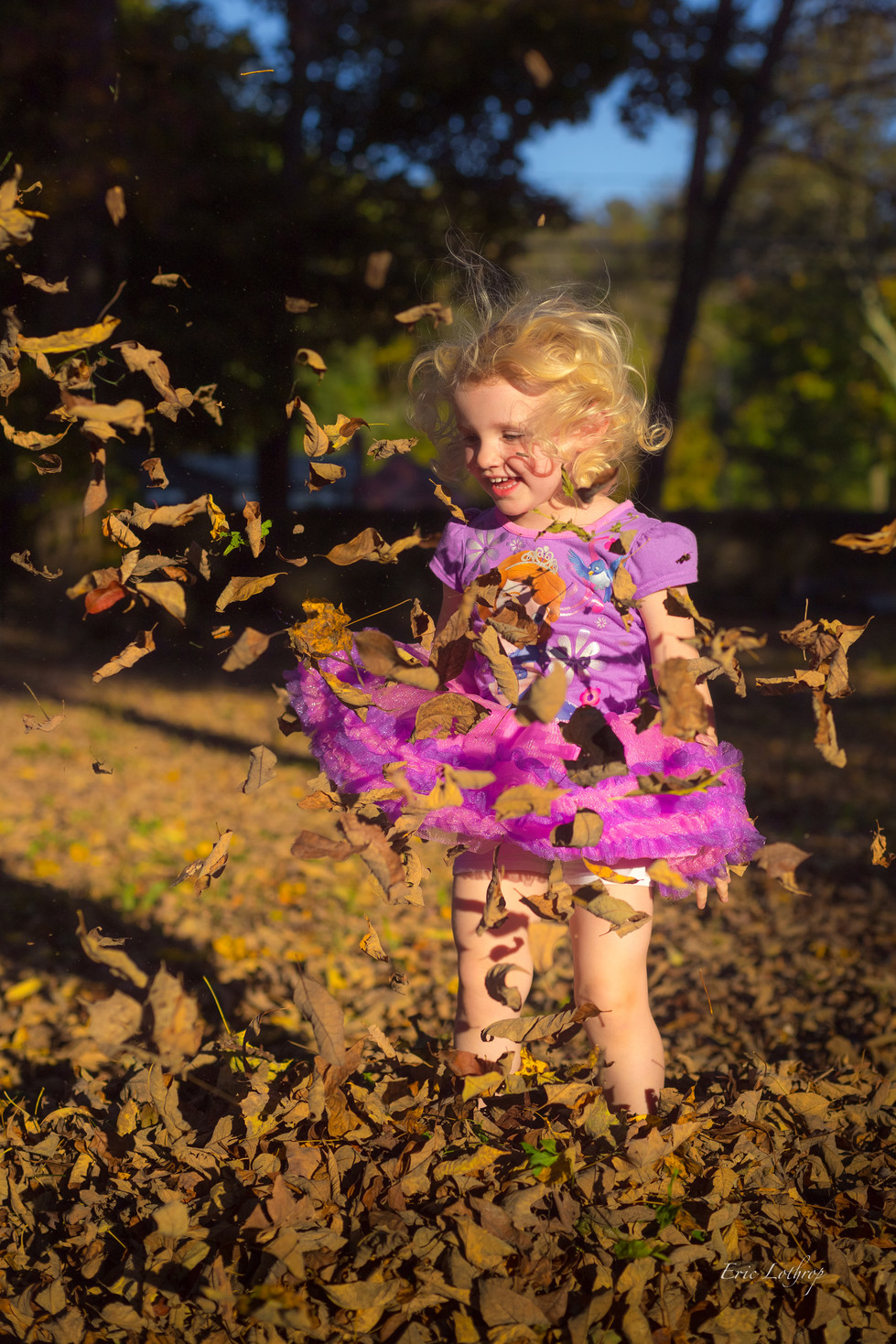 Autumn Always.jpg