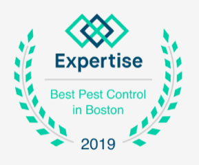 HPC Expertise Best Pest Control in Bosto