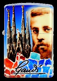 2011_Gaudí._Anual_ZCS._Limitada_33.png