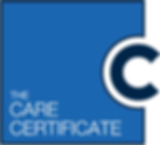 Care-Certificate-Logo_final.png